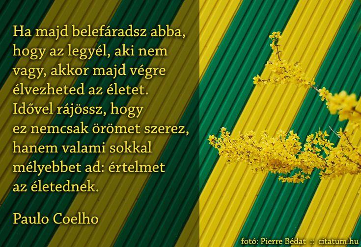 Paulo Coelho idézet önmagunk vállalásáról.