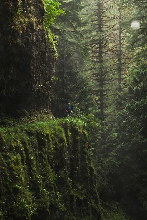 Eagle Creek Trail to Wahtum Lake.. Eagle Creek Trail, Oregon
