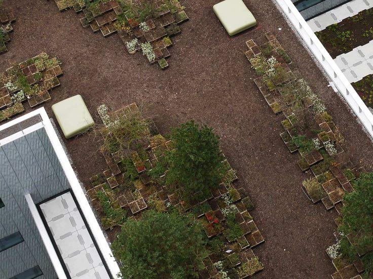 Pixel-Park-roof-garden-05-dv « Landscape Architecture Works | Landezine
