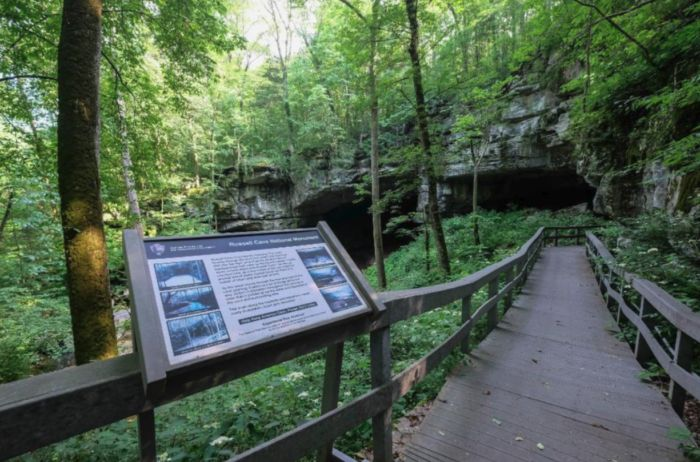 You won't believe what was discovered in this Alabama cave!