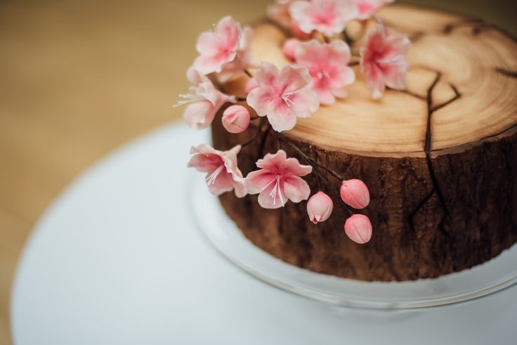Cherry blossom cake close up
