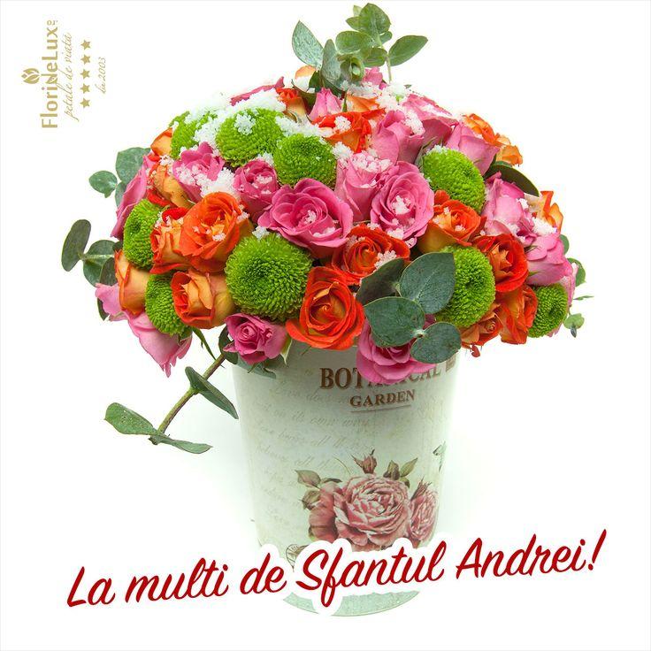 Felicitare Sfantul Andrei https://www.floridelux.ro/flori-pentru-ocazii/flori-cadouri-sarbatori/flori-sf-andrei-30-noiembrie/