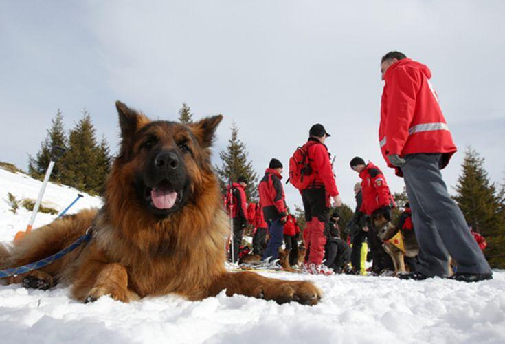Koszty ratownictwa w górach? Dowiedz się więcej!  #góry #ratownictwo #topr #gopr