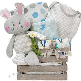 40 best baby gift baskets images on pinterest baby presents cotton tales baby gift basket negle Image collections