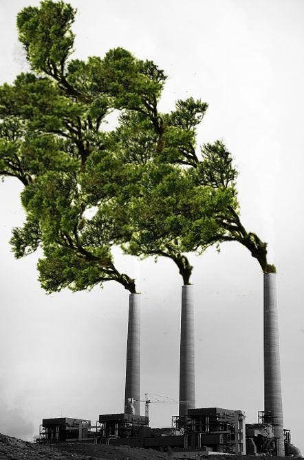Será que é possível transformar essa imagem em realidade? Sem mais poluição? Conte com nossa busca por locais para o descarte adequado em: www.ecycle.com.br/postos/reciclagem.php  www.eCycle.com.br Sua pegada mais leve.