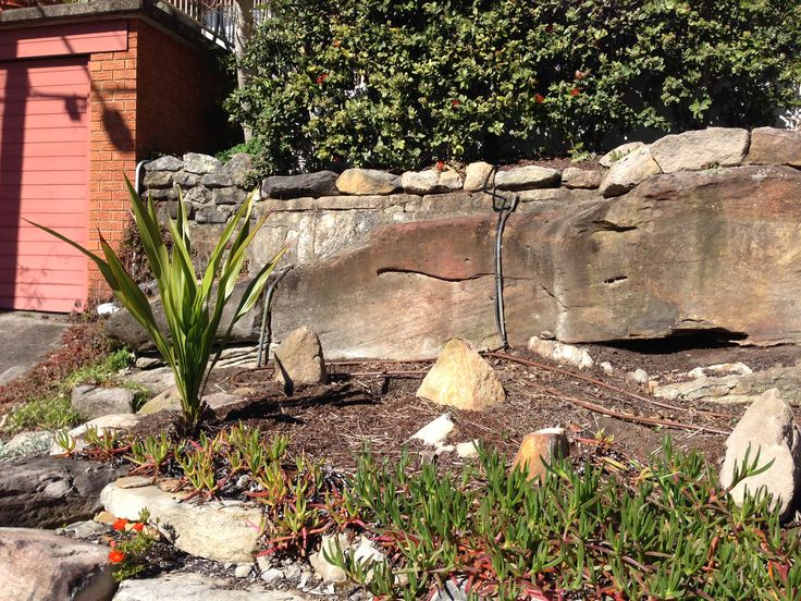 Freshwater front garden - Before