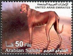 Stamp: Saluki (Canis lupus familiaris) (United Arab Emirates) (Fauna) Mi:AE 675,WAD:AE004.02