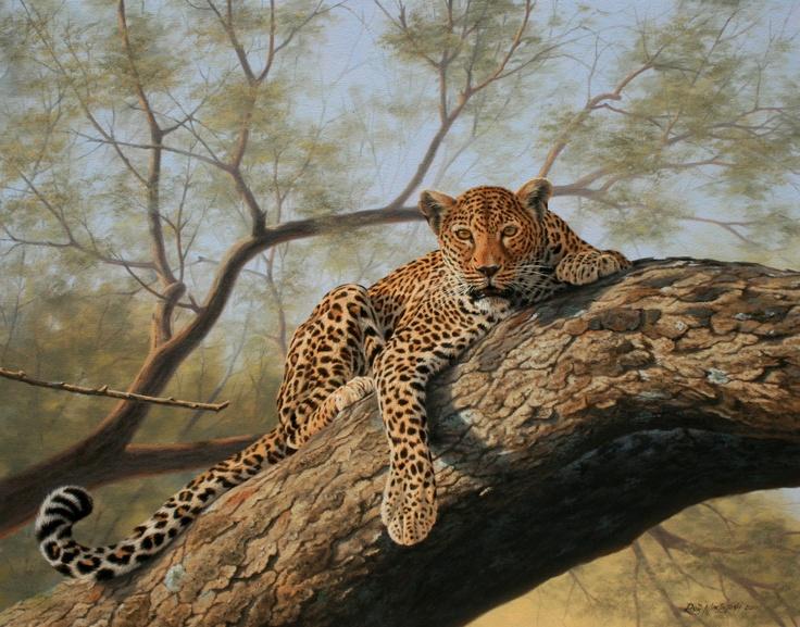 "leopard by Rob MacIntosh  "" Alert"""