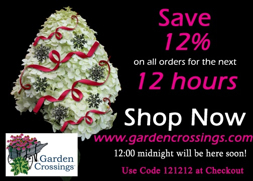 Save... 12% today 12/12/12 on all your perennials, annuals, and shrubs. use code 121212 at checkout. Offer ends 12/12/12 at 12 midnight est.