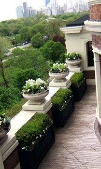 91 Best Images About Boxwood Gardens On Pinterest