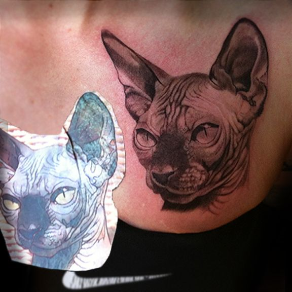 Cat Portrait Tattoo Cat Portrait Flower Tattoo