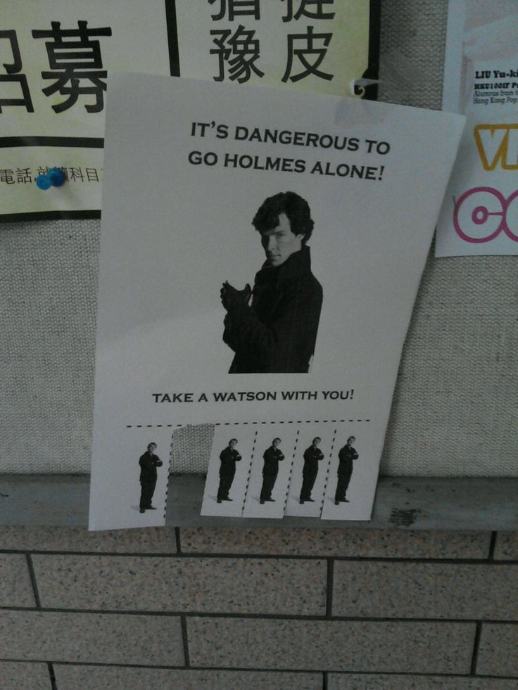 "FUNNY Poster: ""Its Dangerous to go Holmes alone, take a Watson with You."" with p"