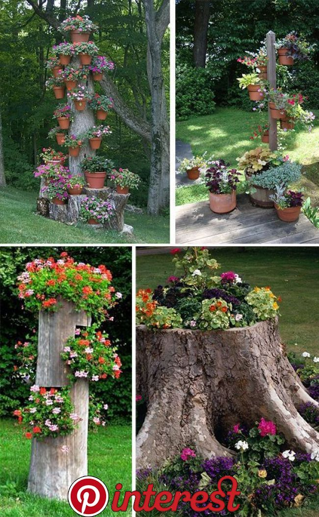 But This Way You Can Decorate An Old Tree Or A Stump Growing In