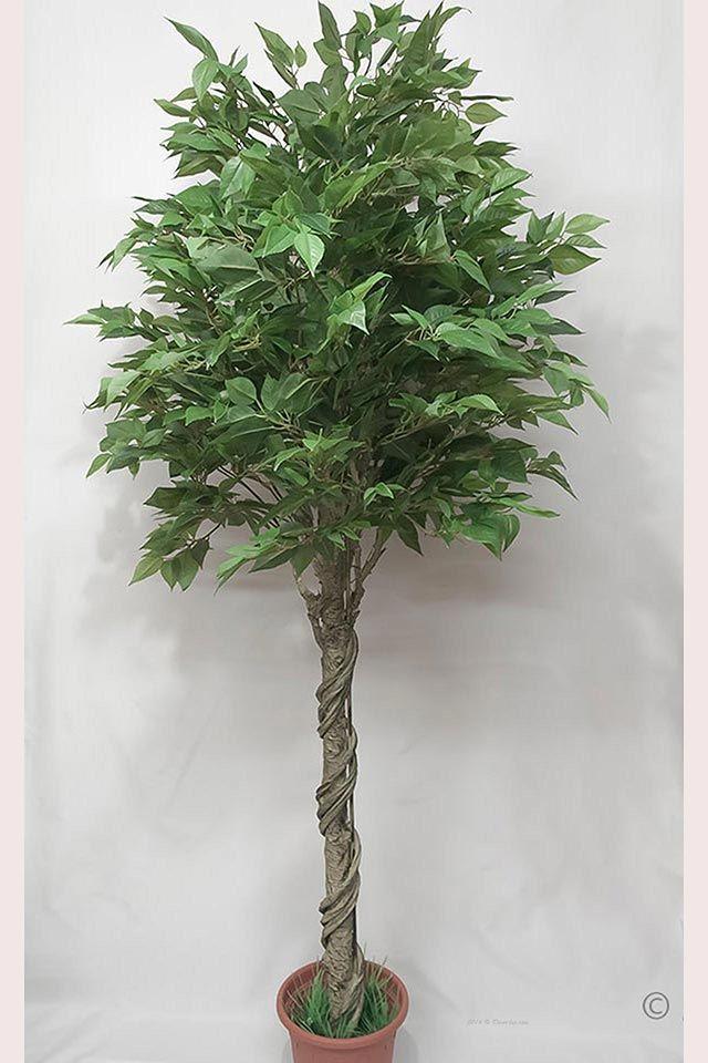 Вишня дерево, лист латекс, 180см.