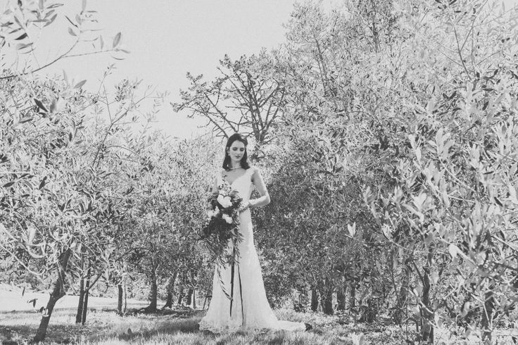 Wintery Wedding Olive Grove Inspiration | CAPTURED by Keryn | www.capturedbyker... | NEW ZEALAND | make me up abby | beau floral atelier | lavender hill coatesville | Vinka Bridal Gown | Red11 Models | winter wedding | olive grove | plum and dusty green