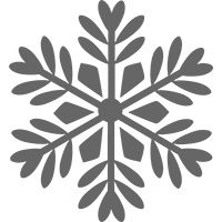 Bold Snowflake Clear-Mount Stamp