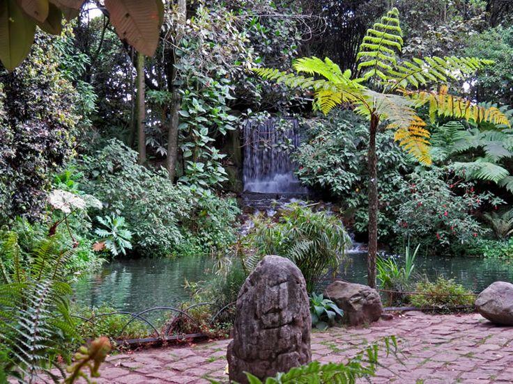 13. Cascada del Jardín De Los Helechos.