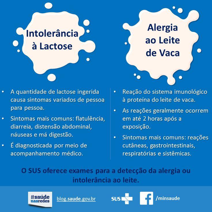 Confira a diferença entre a Intolerância à Lactose e a Alergia à Proteína do Leite de Vaca. Aqui no Empório Ecco você encontra as melhores opções sem leite e sem lactose!   Produtos sem Leite: https://www.emporioecco.com.br/sem-leite   Produtos sem Lactose: https://www.emporioecco.com.br/sem-lactose