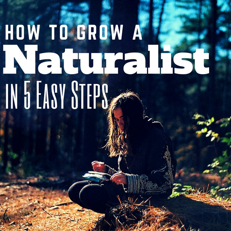 Do you have a child who loves nature? Is always collecting sticks, rocks or bugs? You may have a naturalist on your hands. Read 5 tips for raising a naturalist.