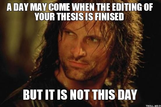 Aragorn Memes | ... , BUT IT IS NOT THIS DAY | Badass Aragorn | Troll Meme Generator
