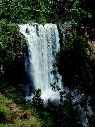 Magnificent Trentham Falls  #Trentham  #waterfalls