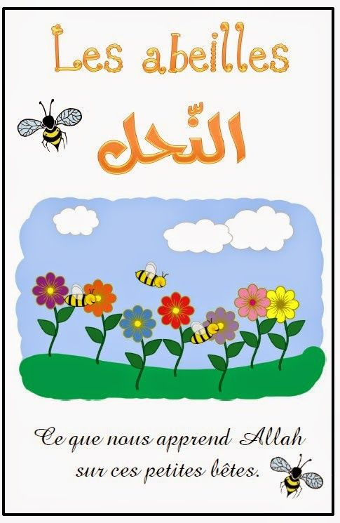 Supports islamiques pour enfants: Les abeilles