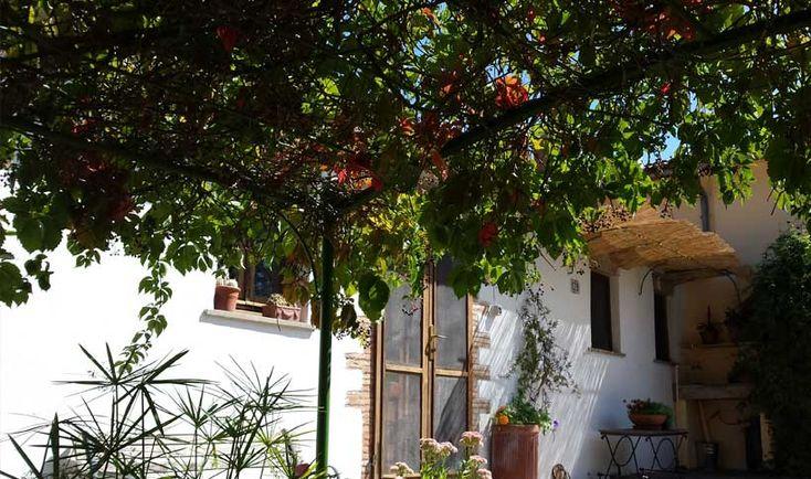 Oltre 25 fantastiche idee su piante da bagno su pinterest for Idee per l aggiunta a casa su due livelli