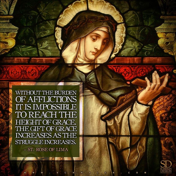 www.Schmalen.com  St. Rose of Lima, pray for us!