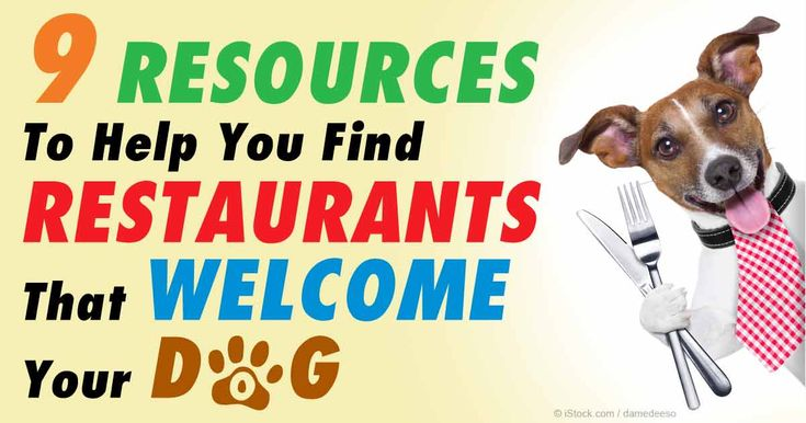 Dogs across the state of California became legally allowed to dine with their humans in restaurants with outdoor seating effective January 1 of this year. http://healthypets.mercola.com/sites/healthypets/archive/2015/04/09/california-dogs-now-legally-welcome-at-restaurants.aspx