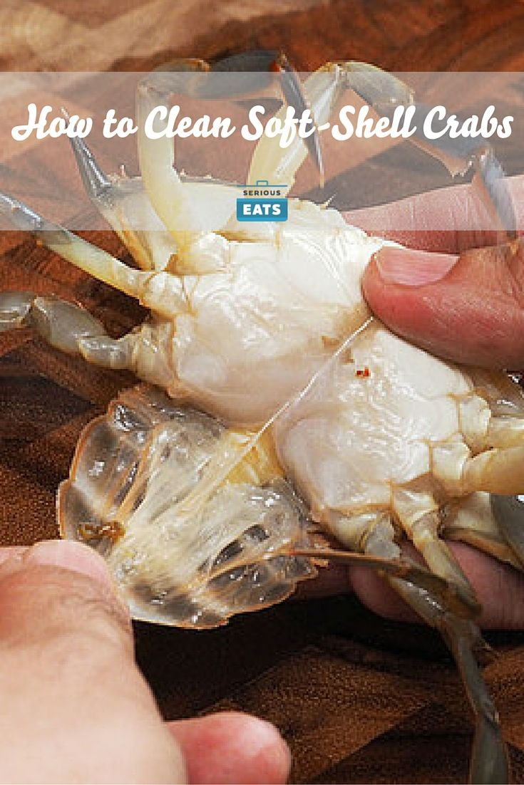 Soft-shell crabs are actually really easy to clean at home.