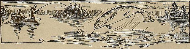 Home - fishing tackle #Fishing #FishingLures #fishingstore #bassfishing #fishingtackle