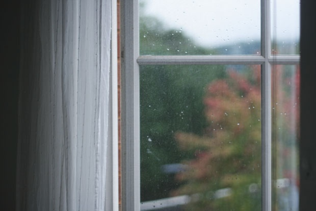 rainy morning, early fall.