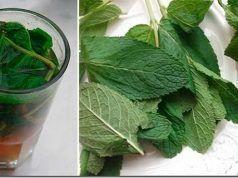 Jen jeden pohár tohoto nápoje pročistí a obnoví vaše játra