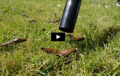 VIDEO: Sådan fungerer støvsugeren til dræbersnegle