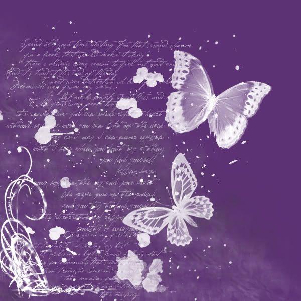 Purple Butterfly | purple butterflies