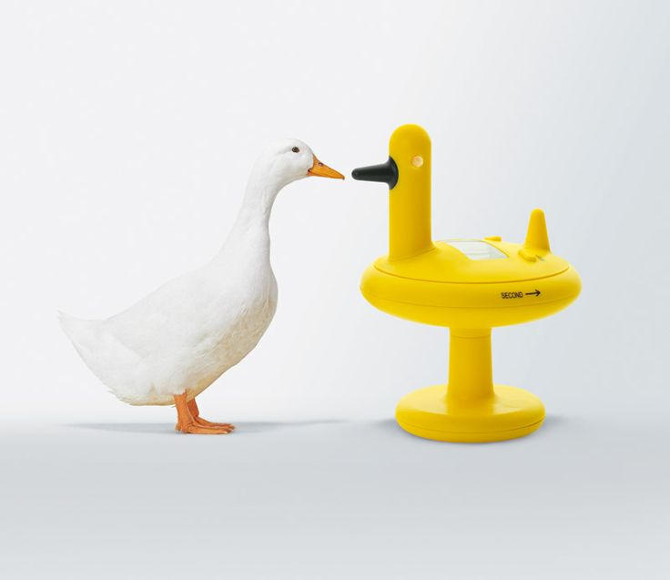 Minutnik Duck - Alessi od FabrykaForm.pl