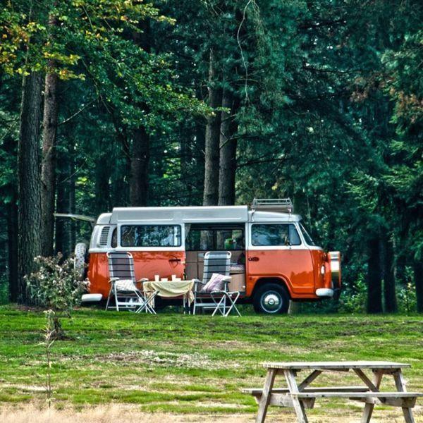 Landgoedcamping Börkerheide in Drenthe