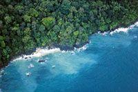 Litoral de roca basáltica en la Isla Gorgona.