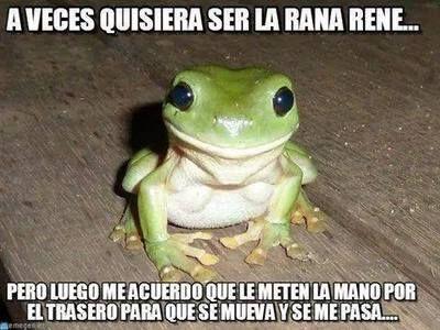 A veces quisiera ser la rena rene →  #humorgrafico #imagenesgraciosas #memesenespañol #memesparafacebook #ragecomics
