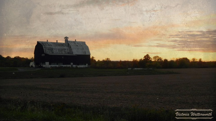 Farm in Smithville