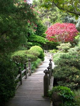 asian gardens san mateo