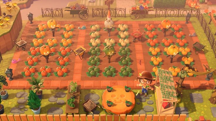 18+ Festivale items animal crossing images