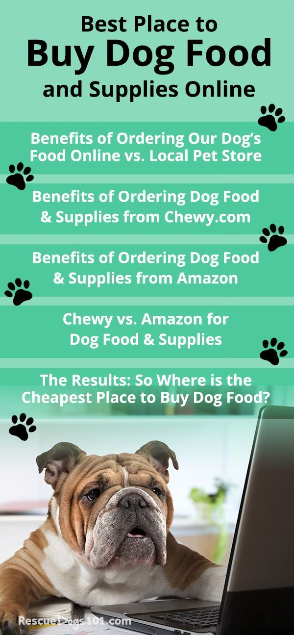 Best Place To Buy Dog Food And Supplies Online Dog Food Recipes