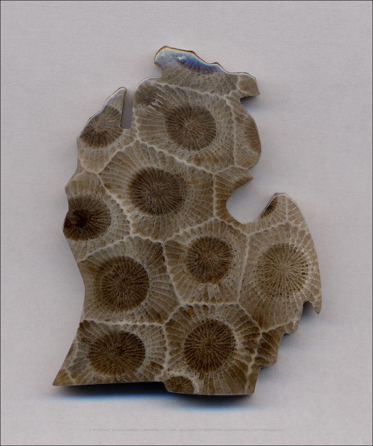 Petoskey stone Michigan