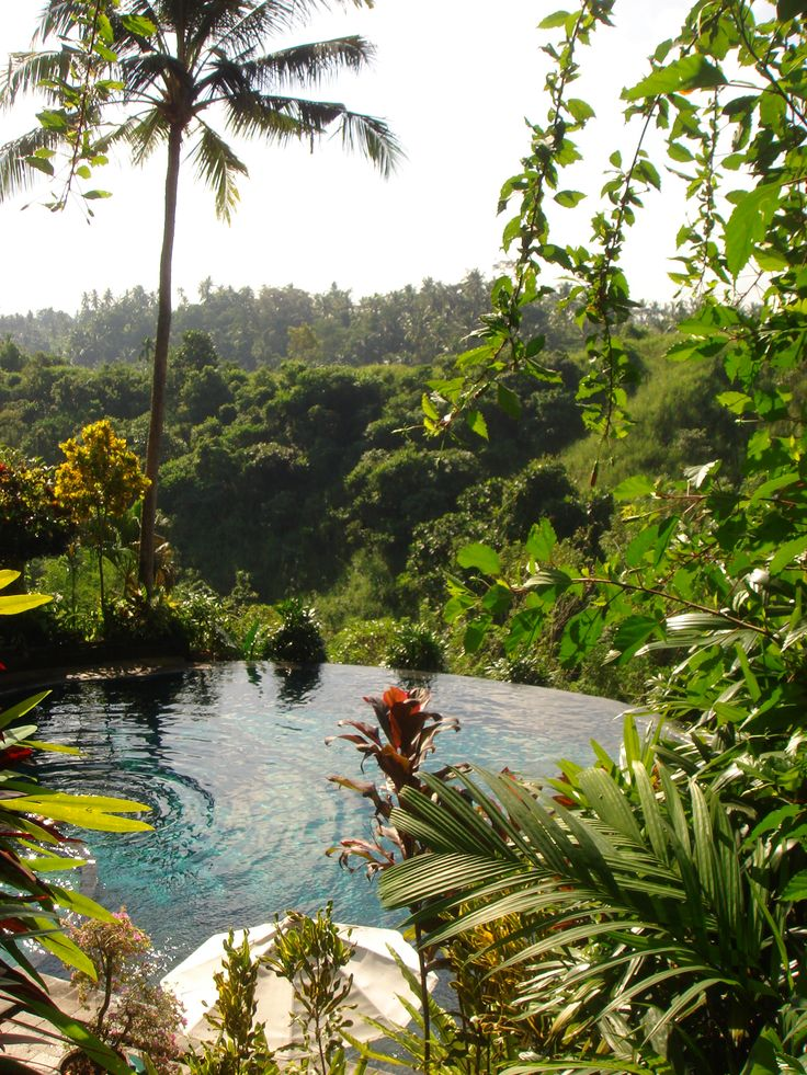 17 best ideas about bali indonesia hotels on pinterest for Design hotel ubud