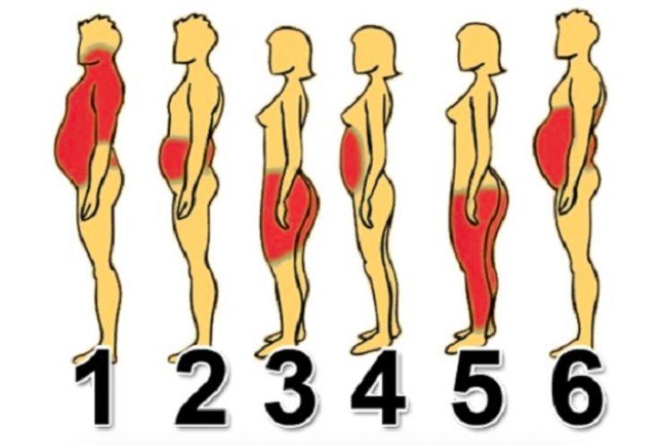 Perdez du poids facilement en fonction de votre morphologie selon ces conseils de scientifiques noté 3.57 - 14 votes Pendant que certaines pensent à perdre du ventre, d'autres sont focalisées sur la graisse qui s'est installée sur leurs cuisses ou leurs fesses. Chaque femme a en effet sa propre morphologie et doit remédier de manière...