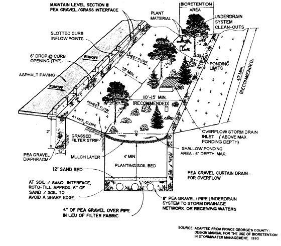 bioretention basins