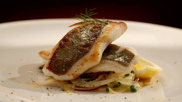 John Dory with Fennel Salad