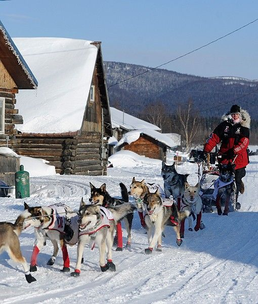 How cool would it be if I could get a gig in one of the towns that lie on the Iditarod Trail?!