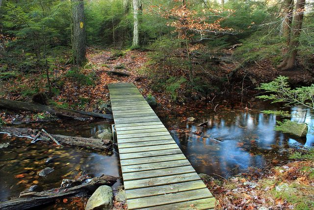 10 Trails In Pennsylvania You Must Take If You Love The Outdoors